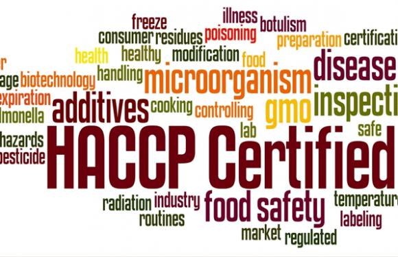 La méthode HACCP : l'essentiel à savoir