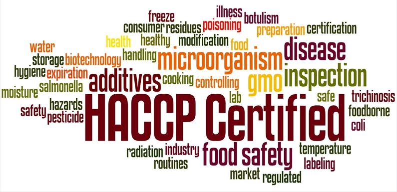 directeur social, haccp