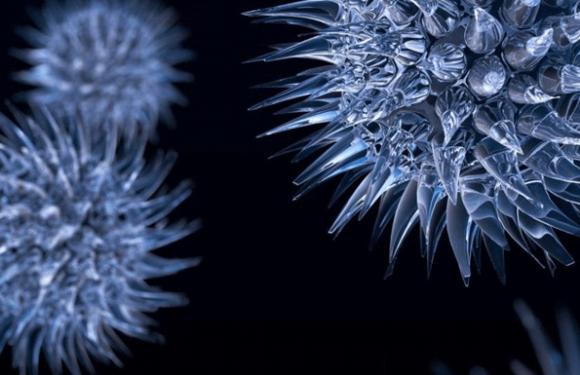Pour prévenir les maladies infectieuses, « mieux vaut savoir parler aux gens »